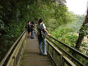 © Por más áreas protegidas: Reserva de Vida Silvestre Urugua-í