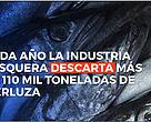 En Argentina se descartan al mar más de 110 mil toneladas de merluza al a?o