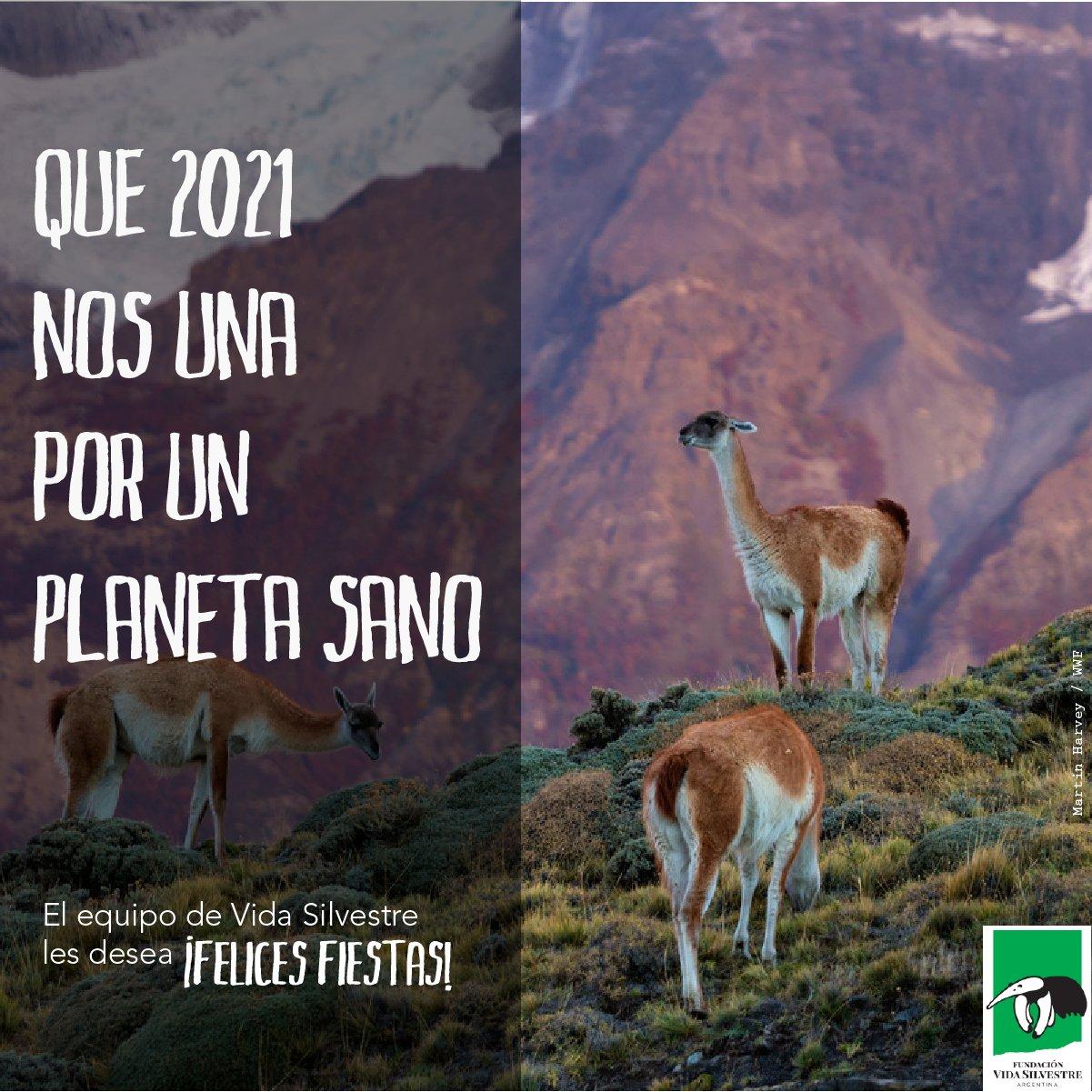 Que 2021 nos una por un planeta sano